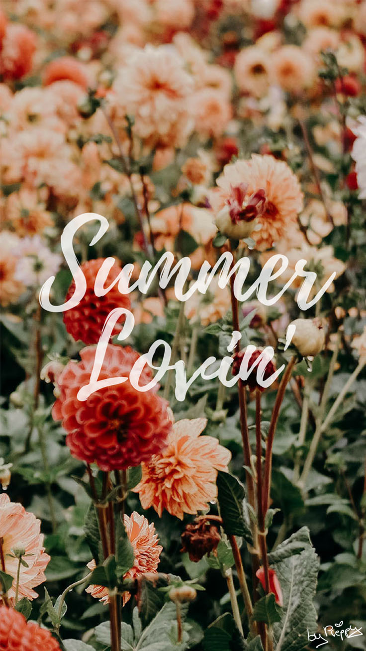 Summer Lovin' Quote iPhone Wallpaper by preppywallpapers.com