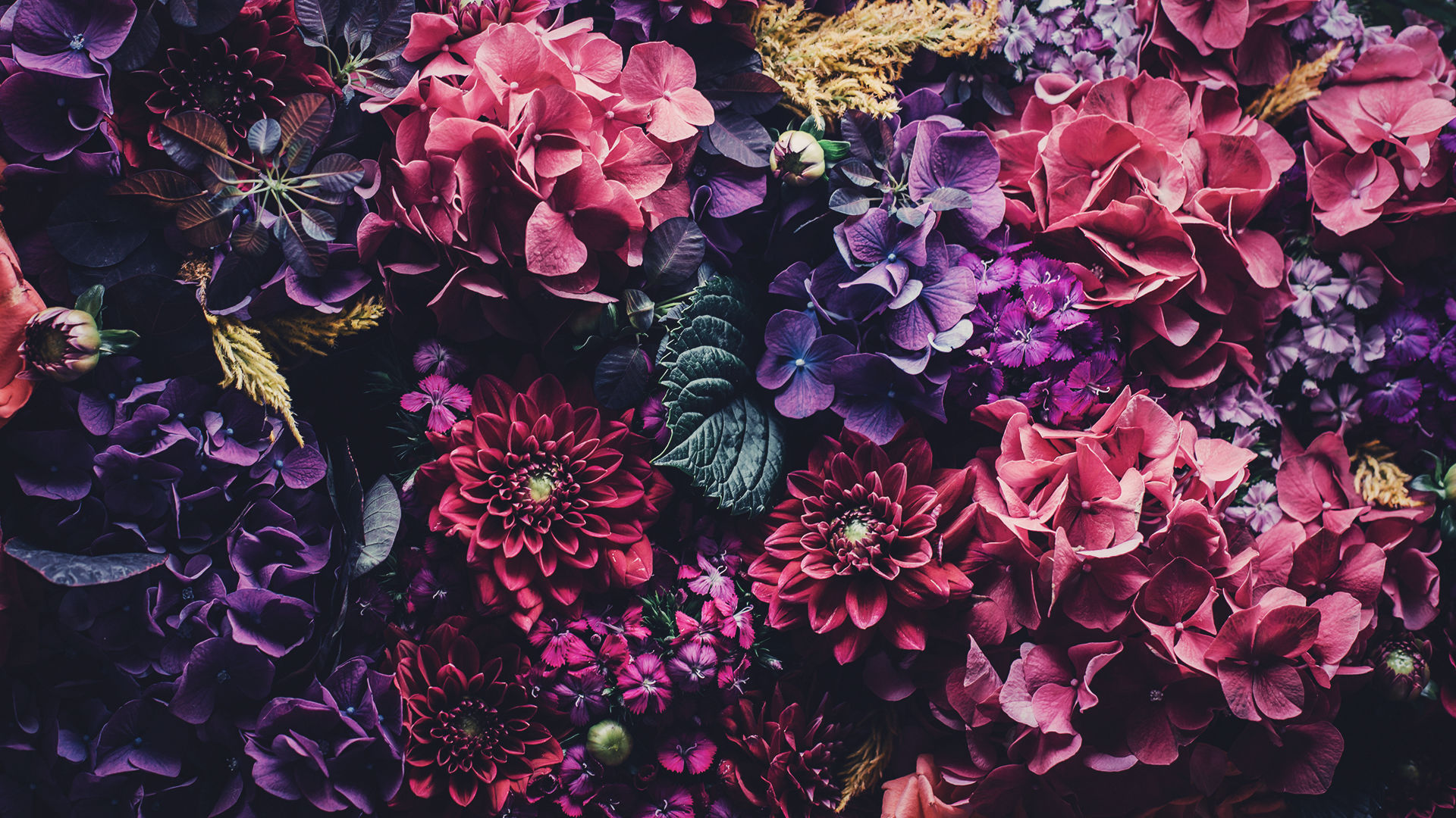 Floral Mac Wallpapers by PreppyWallpapers
