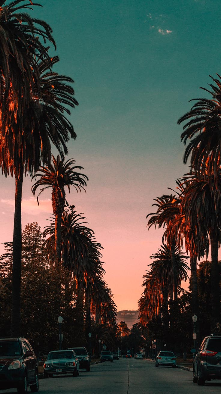 20 Beautiful Los Angeles Iphone X Wallpapers Preppy Wallpapers