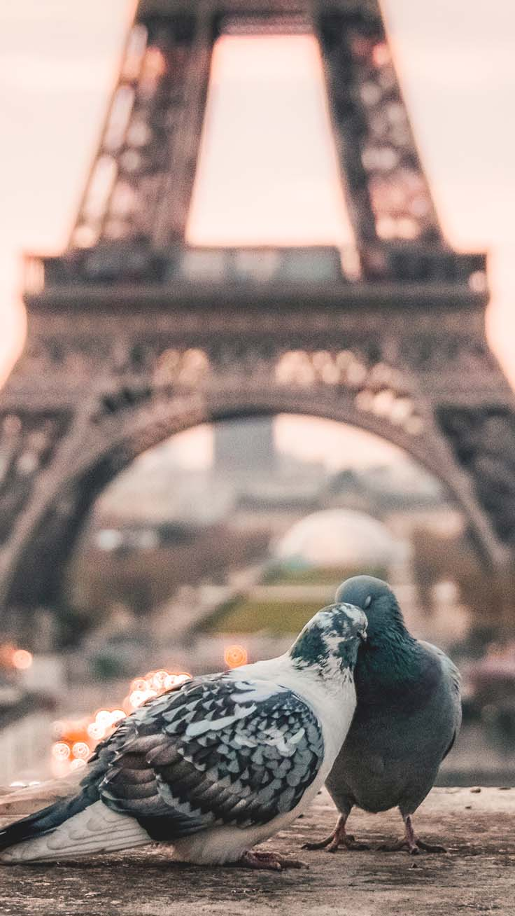 Europe iPhone Wallpapers by Preppy Wallpapers